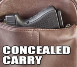 Concealed Carry Classes in Effingham