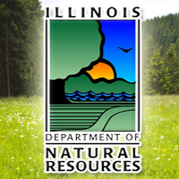 New Report Examines Strategies for Dealing with Flooding in Illinois