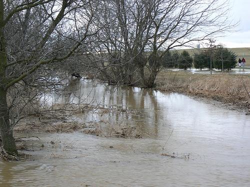 Floods!Floods!Floods!
