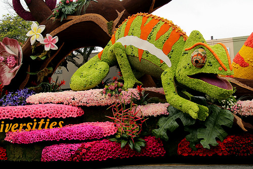 Volunteers Working Around The Clock On Rose Parade Floats