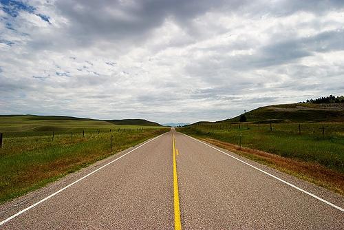 "Illinois Voters To Address ""Safe Roads Amendment"""
