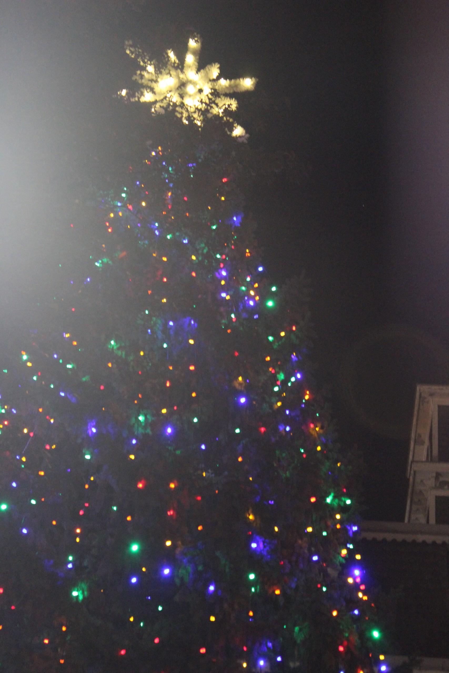 Hometown Christmas Held in Downtown Effingham
