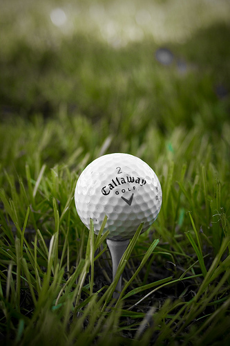 Effingham Rotarys to Hold Golf Outing to Eliminate Polio