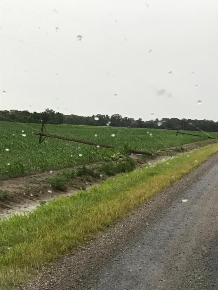 Early Morning Storms Leave Widespread Damage