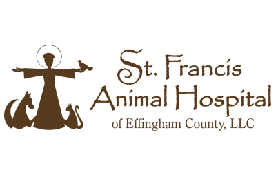 st-francis-animal-hospital
