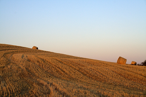 Gov. Rauner Declares Harvest Emergency