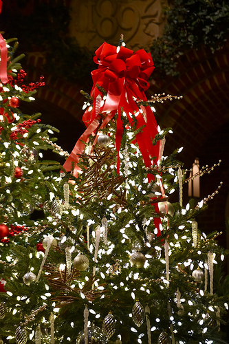 Today is The Best Day To Get a Christmas Tree Before December 25th! Head To These Online Retailers To Get The Best Deals On Christmas Trees