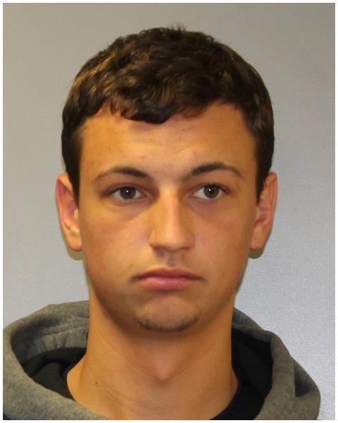 Local Mattoon Man Arrested for Sexual Assault