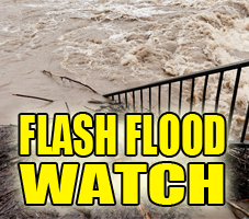 Flash Flood Watch for Portions of Illinois