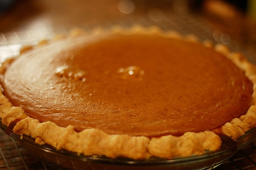 Your Pumpkin Pie Probably Contains Absolutely Zero Pumpkin
