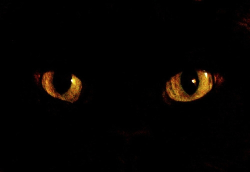 The 10 Most Common Superstitions