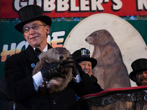 Big Bucks For Hotel Rooms For Groundhog Day