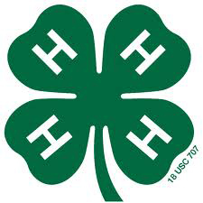 4-H Sewing Workshop This Weekend
