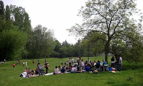 Windsor City Park Picnic Today