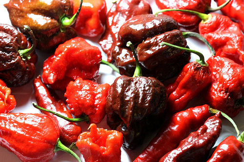 """A Man Winds Up in the ER With """"Thunderclap Headaches"""" After He Eats One of the World's Hottest Peppers"""