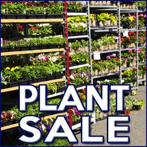 W.H.A.T. Community Group Plant Sale