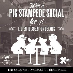 Stampede Social at The Pig & Duke Neighbourhood Pub