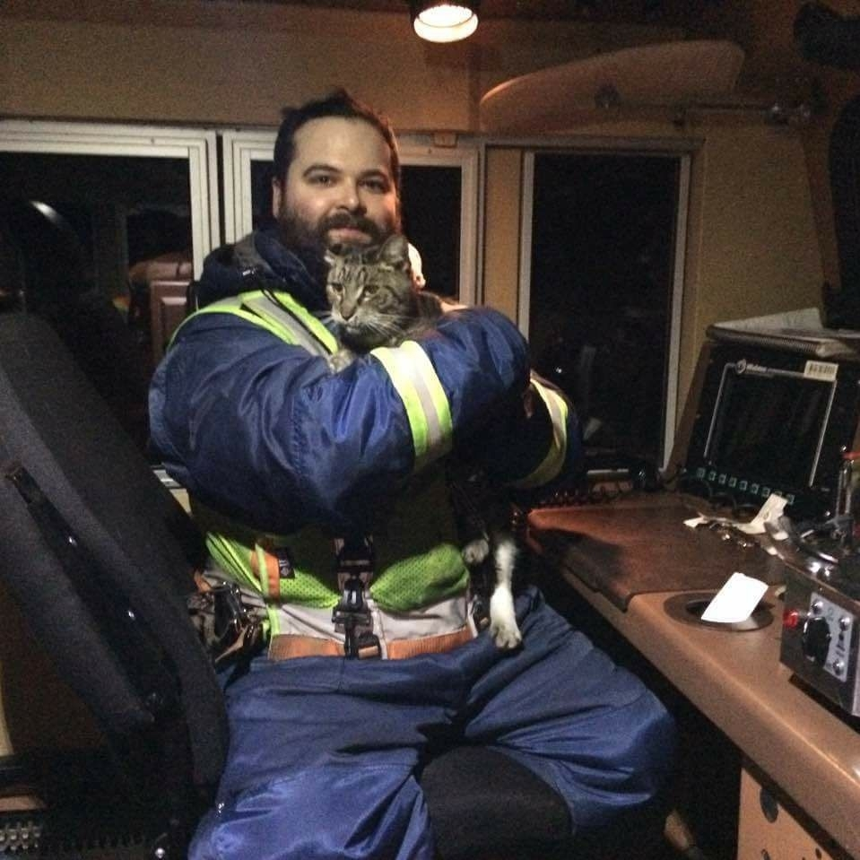Conductor Finds a Freezing Cat That Hopped on a Train from Melville to Alberta!