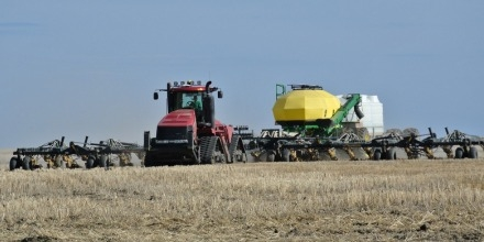 Survey shows Saskatchewan farmers will seed more wheat and less canola this year