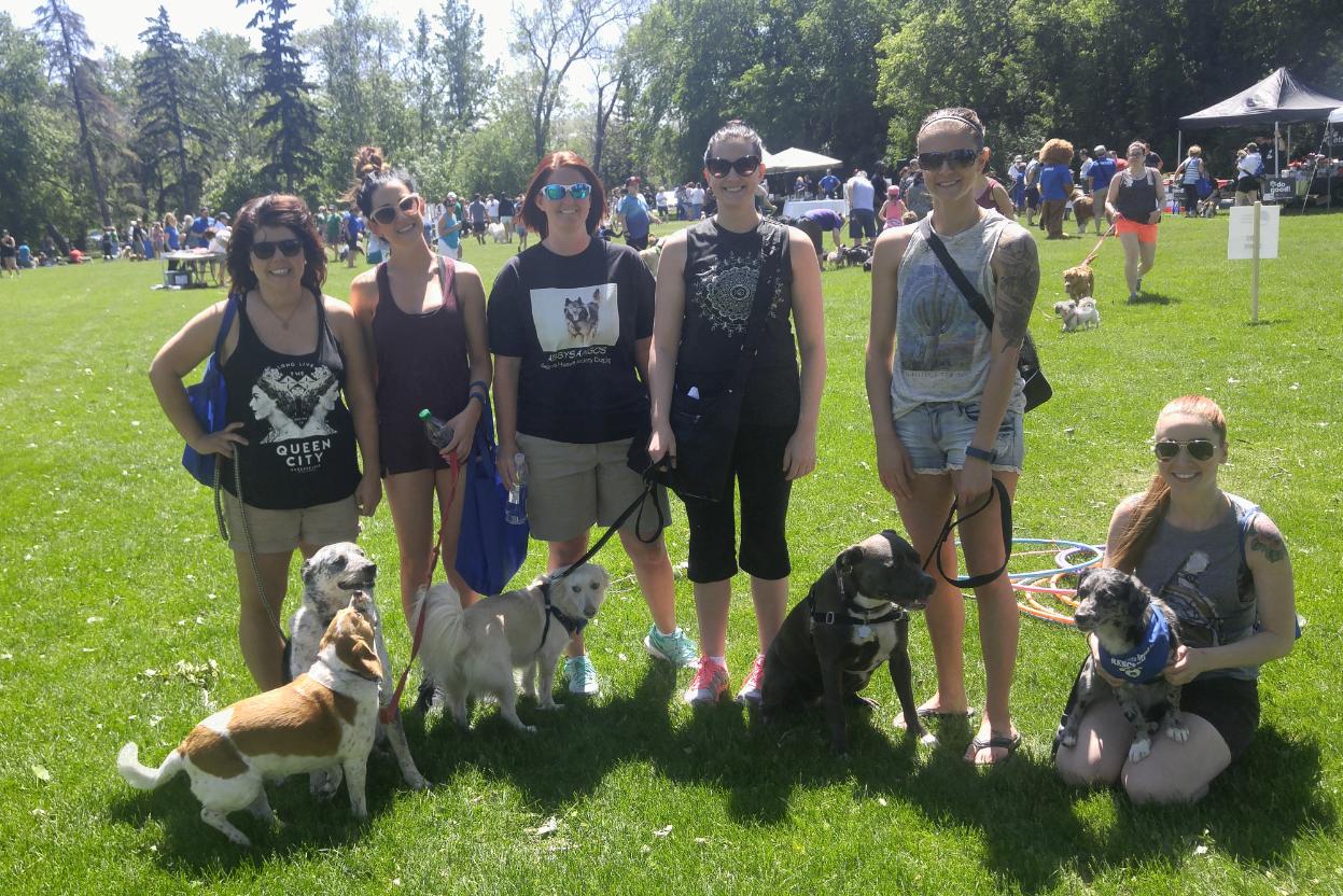 The Regina Humane Society's 26th annual Dog Jog to kick off