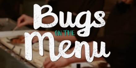 bugs_on_the_menu
