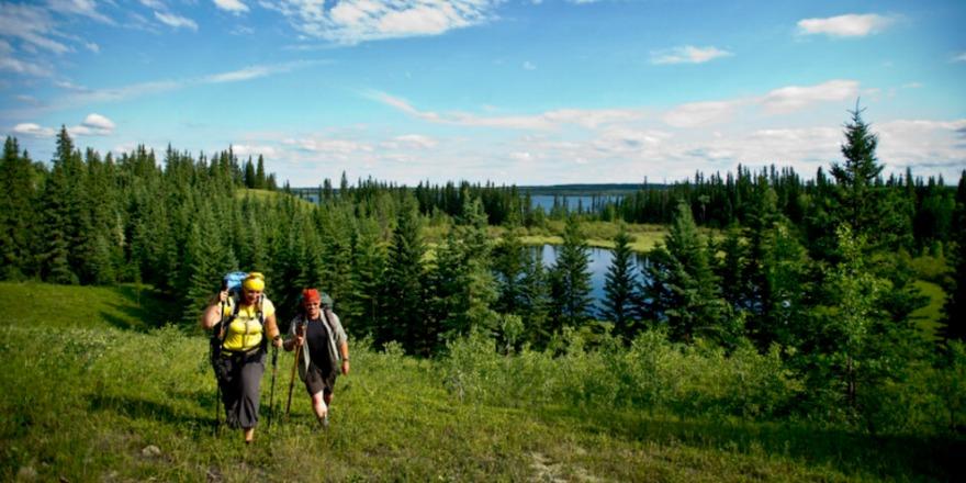 boreal_trail
