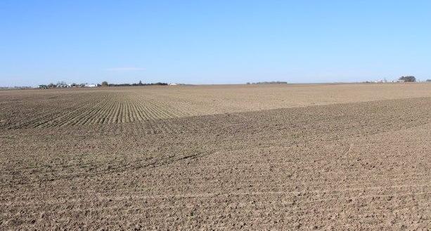 farm_dry