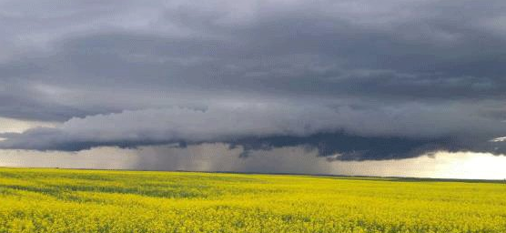 It could be a hot, stormy Saturday night in parts of Saskatchewan