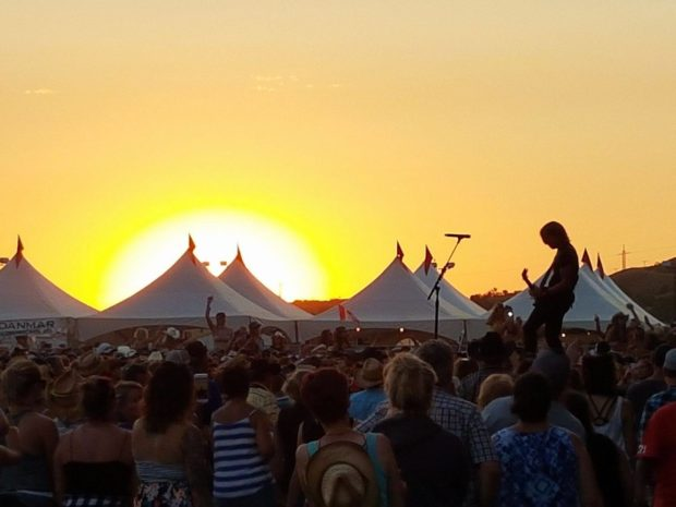 2 face wildlife charges after seagull killed at Craven Country Thunder festival