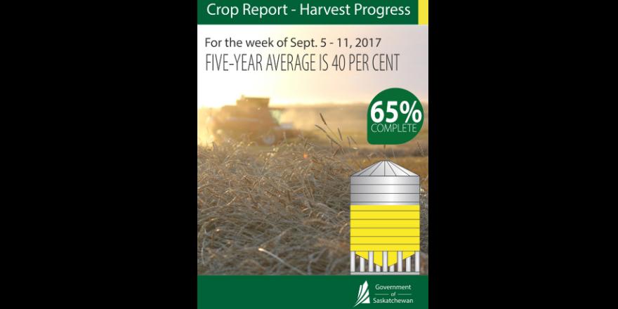crop_sept_5
