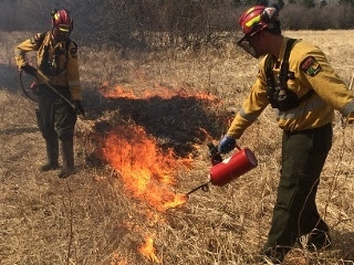 Wildfire risk to be reduced through controlled burns in RMWB