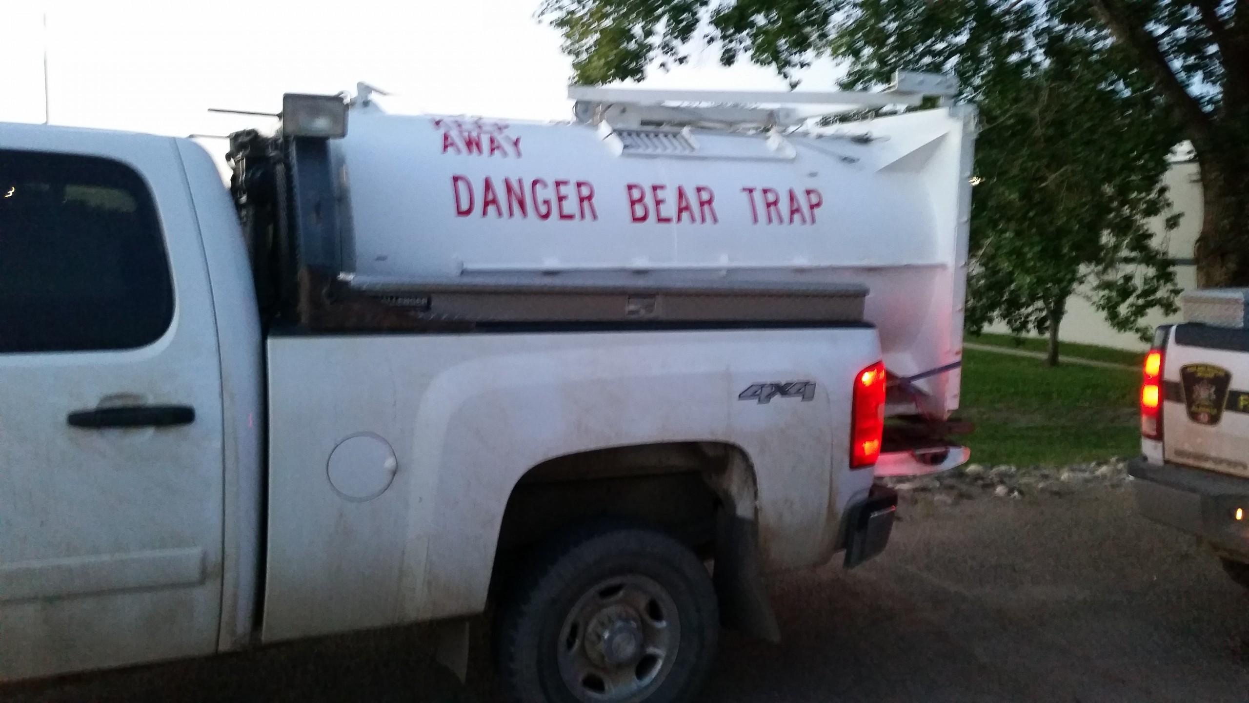 Fully grown black bear found injured in parking garage