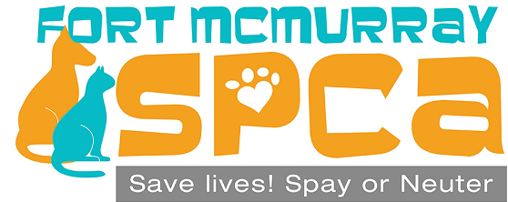 FMSPCA Still On The Hunt For New Executive Director