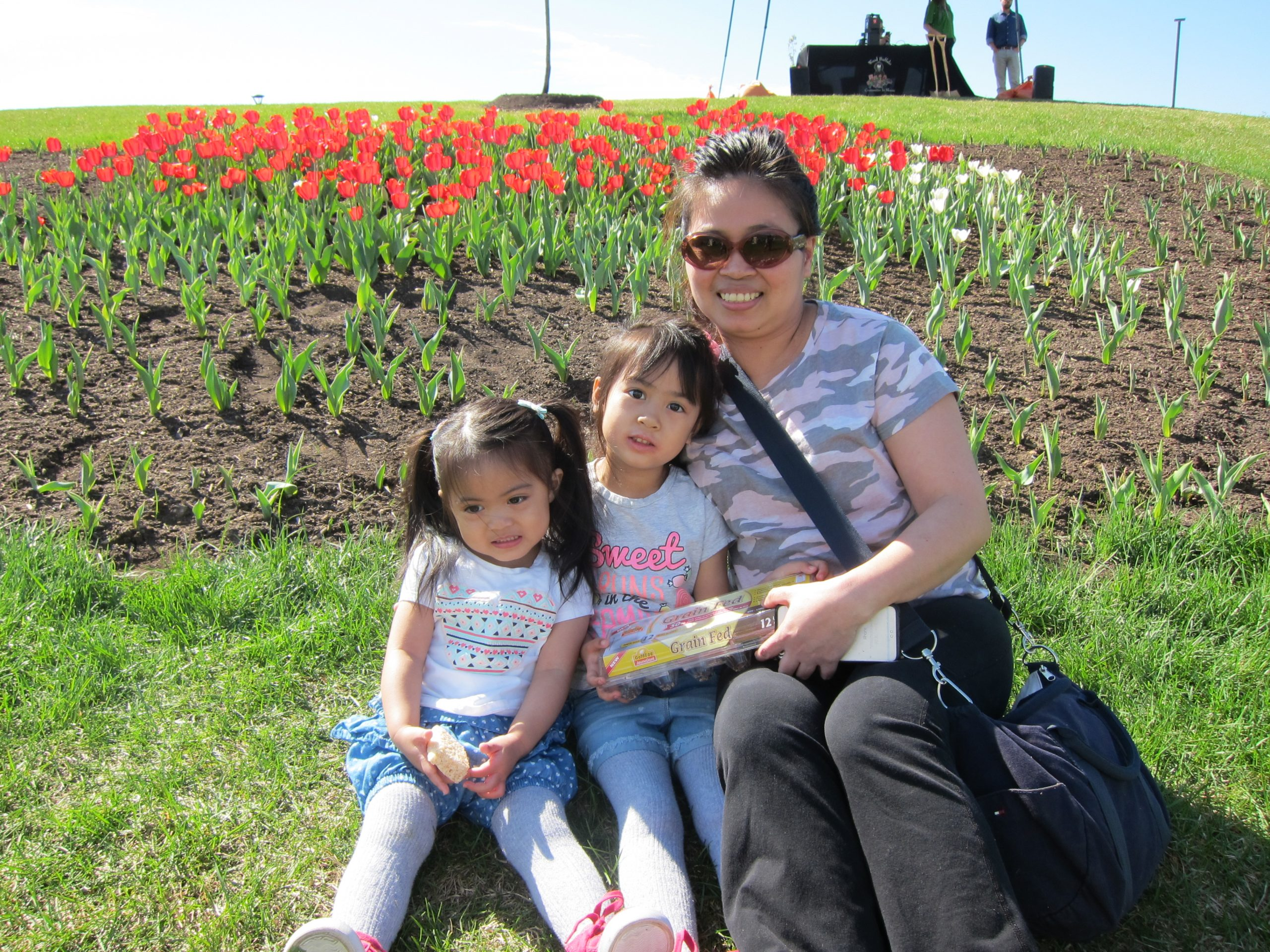 RMWB Unveils Canada 150 Tulip Garden