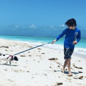 you-can-travel-to-an-island-full-of-puppies-and-i-want-to-go-to-there-27