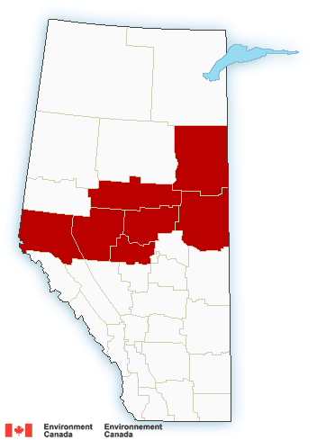 Snowfall Warning In Effect as 10-15 cm Expected