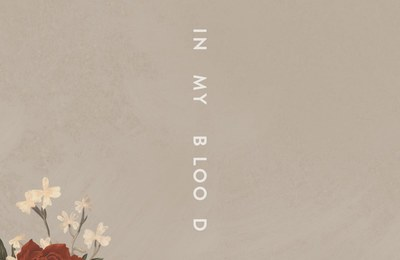 New Music: Shawn Mendes - In My Blood
