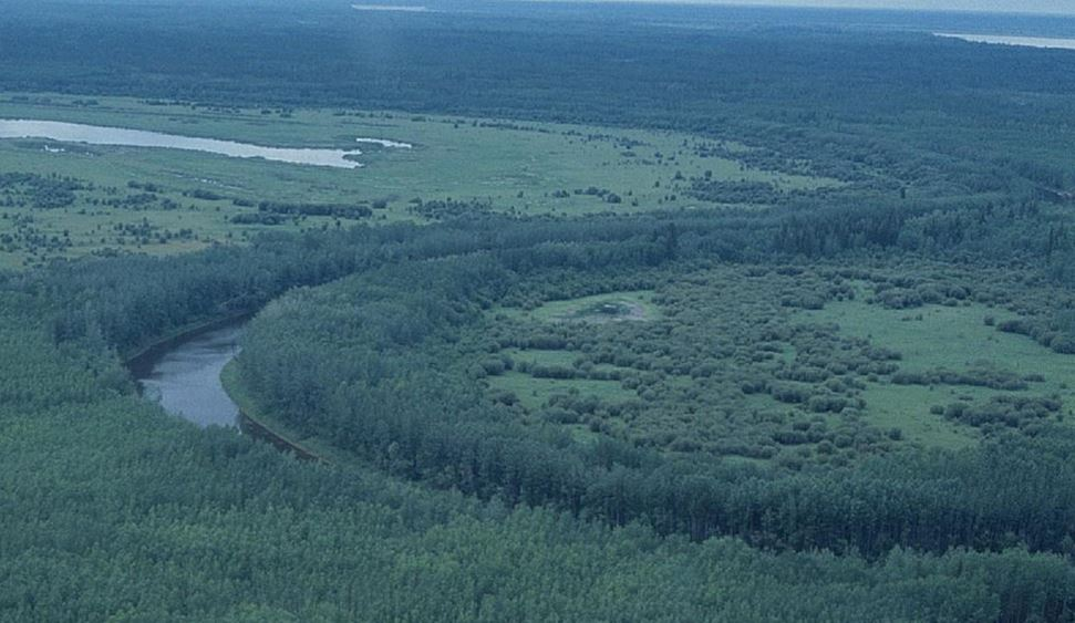 World's Largest Boreal Contiguous Protected Forest Now North of Fort McMurray