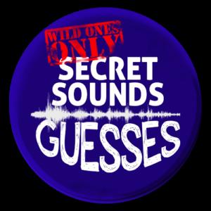 Secret-Soundguessesbutton