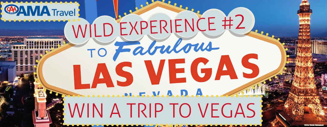 Wild Experience Vegas!