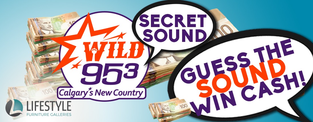 Feature: http://www.wild953.com/wild-95-3-secret-sound/