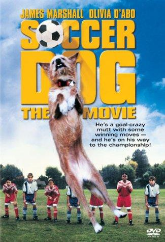 Today on eTV: Soccer Dog- The Movie
