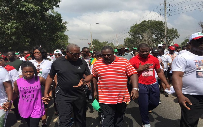 Mahama compares Akufo-Addo and his appointees to pigs