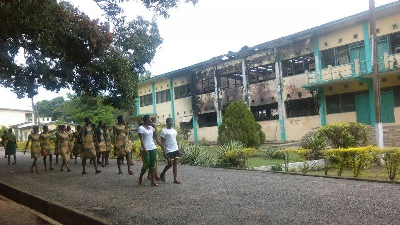 Fallen tree kills student at Koforidua Ghanass, 6 injured