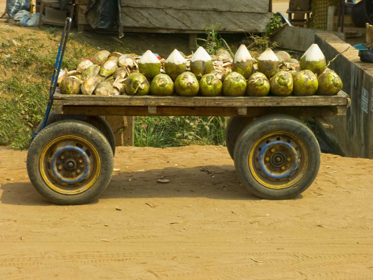Ex-convict returns to prison for stealing coconut