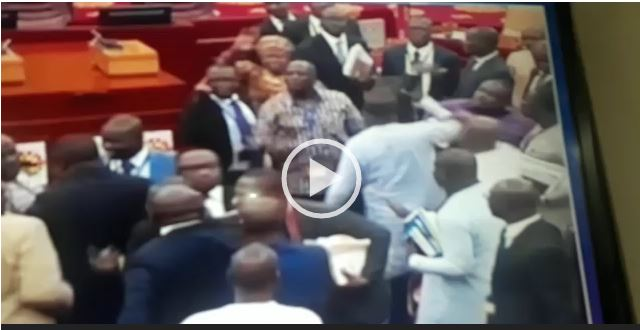 VIDEO: Watch MPs in a scuffle at Parliament