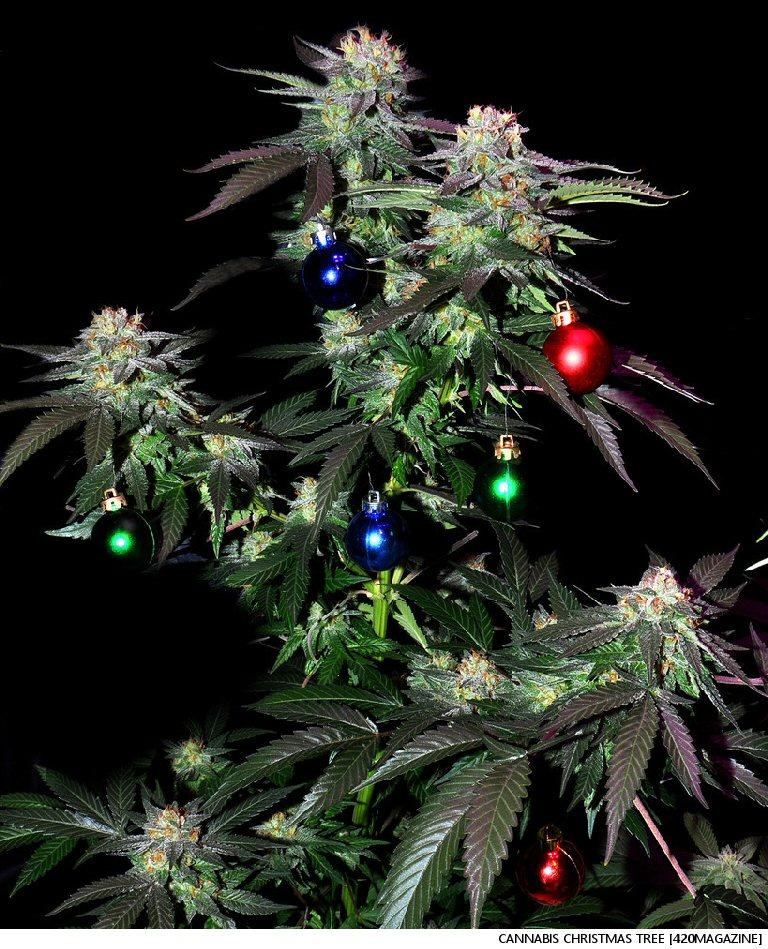 I'm Dreaming Of A Green Christmas: The Cannabis Advent Calendar