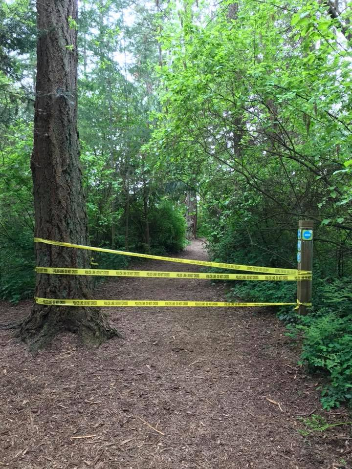 Police: Seeking witnesses to armed robbery in Saxe Point Park