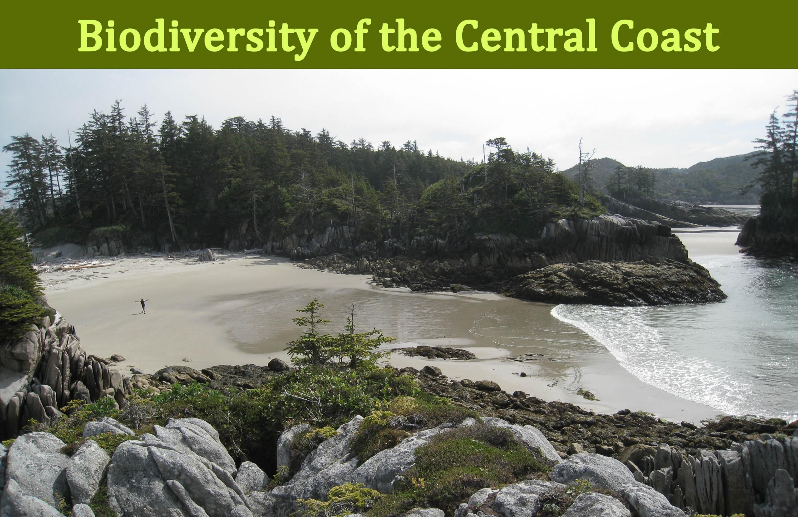 The Central Coast Biodiversity app is FANTASTIC