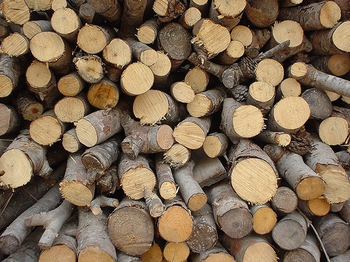 The Softwood Lumber Dispute Continues
